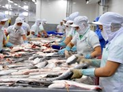 Tra fish export expected to bring home 600 million USD in Q1