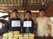 Quang Tri border guards bust trans-national drug trafficking ring