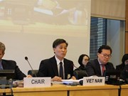 Vietnam pledges to keep up efforts to promote civil, political rights