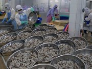 Vietnam aims to earn 4.2 billion USD from shrimp exports