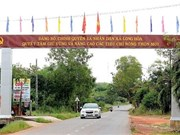 All 46 communes in Binh Duong recognised as new-style rural areas