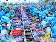 Vietnam world's fourth biggest seafood exporter