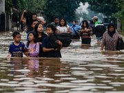 At least 42 people killed by flash flood in eastern Indonesia