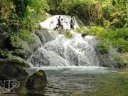 Xuan Son National Park develops community tourism