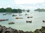 Hai Phong city taps sea, island tourism development