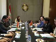 Egypt wants to develop ties with Vietnam