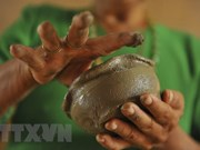 Xoe Thai dance, Cham pottery seek UNESCO's heritage recognition
