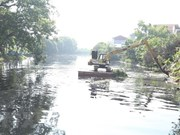 Hanoi's irrigation system polluted with wastewater