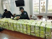 Vietnamese, Philippine police work on trans-national drug trafficking case