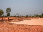 Over 67,160 ha of land threatened by drought, saline intrusion