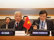 Vietnam calls for more int'l support in war consequence settlement