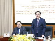 CMSC should develop capital, not trade it: Deputy PM
