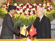 Vietnam, Brunei upgrade ties to comprehensive partnership