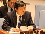 Vietnam joins int'l efforts in preventing financing of terrorists: Ambassador