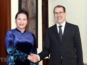 Morocco – Vietnam's priority partner in North Africa: top legislator