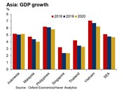UK chartered accountants forecast slower SE Asia growth