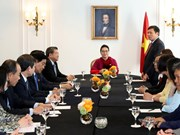 NA Chairwoman meets leaders of Vietnamese associations in Europe