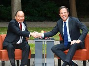 Vietnam visit by Dutch leader pushes up bilateral ties