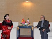 Vietnam, Iran look to foster partnership in various fields