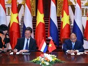 Vietnam, Netherlands issue joint statement