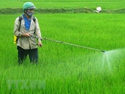 Vietnam bans weed killer ingredient glyphosate