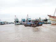 Ben Tre eyes sustainable development of marine economy