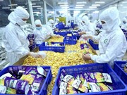 Vietnam boasts many advantageous exports to Romania: Ministry