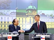 Vietnam looks to broader cooperation with Romania, Czech
