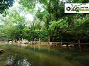 Ozo Treetop Park – new tourism product of Quang Binh