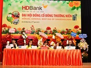 HDBank targets profits up 27 percent in 2019