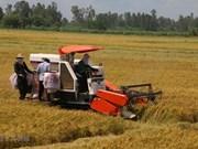 Programme bolsters industrial development in rural areas