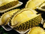 Durian, mango festivals in Chanthaburi, Ratchaburi
