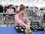 Vietnamese enterprises have low productivity: report