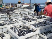 Solutions employed to fulfil fishing targets