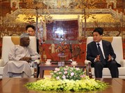 Hanoi shares economic development with Africa