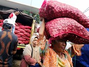 Indonesia assures sufficient staple food supply during Ramadan