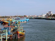 Ca Mau speeds up monitoring devices installation on fishing vessels