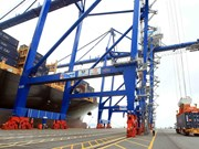 Hai Phong int'l terminal welcomes first container ship