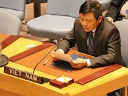 Vietnam calls for training, building UN peacekeeping forces
