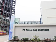 Japanese household products maker opens fatty acid plant in Indonesia