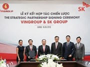 RoK's SK group to pour 1 billion USD in Vingroup