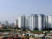 Property market still attractive in medium, long terms: forum