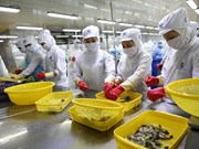 Mitsui & Co invests 155 million USD in Vietnamese seafood company