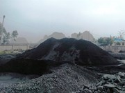 Team established to supervise charcoal exploitation