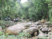 Bac Giang strives to preserve biodiversity in Tay Yen Tu