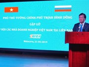 Deputy PM chairs meeting of Vietnamese, Russian businesses