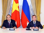 Vietnam, Russia to further diversify cooperative ties: PMs