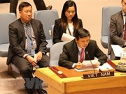 UN Security Council membership enables VN to contribute more to UN
