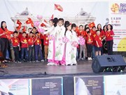Festival promotes Vietnam-Czech culture exchange