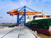 Vietnam looks to build criteria for ecological seaports